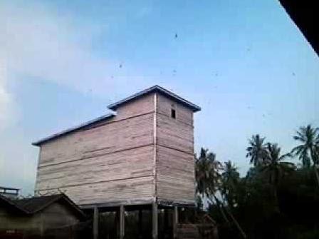 konsep biaya pembuatan rumah walet atap minimalis - atap