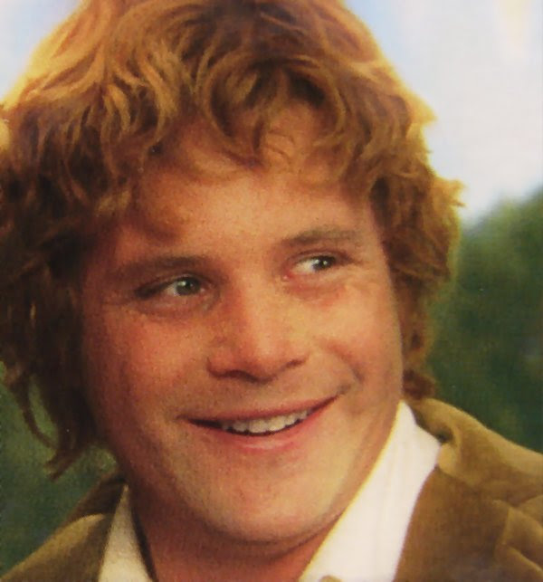 Image result for samwise happy