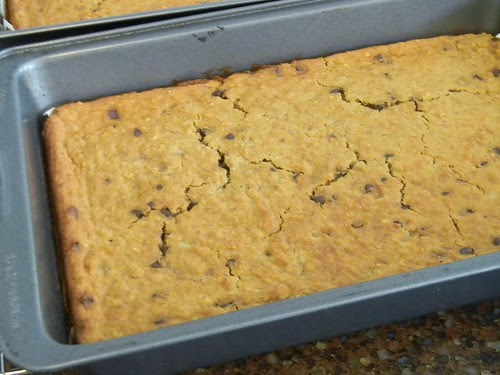 Genius Chocolate Chip Blondies