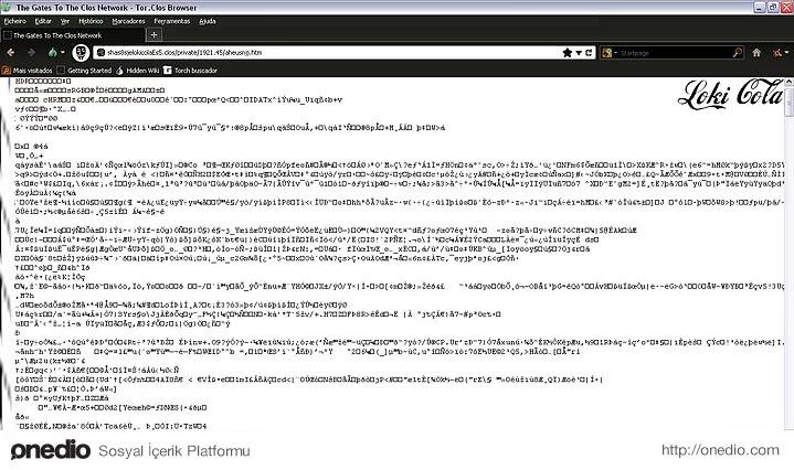 Erişim sağlamak için bir web tarayıcısına değil, özel cihazlara ihtiyaç duyulan 'Kapalı Sistem'