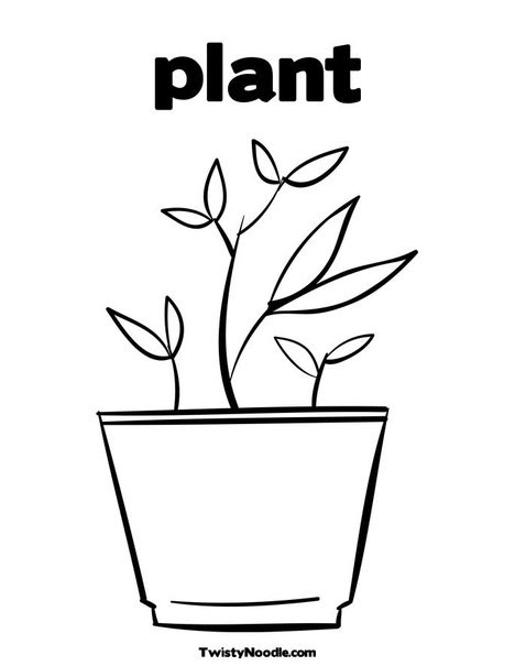 free coloring pages  parts of plants coloring pages