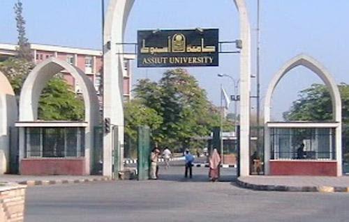 http://gate.ahram.org.eg/Media/News/2013/6/29/2013-635081072507733045-773_main.jpg
