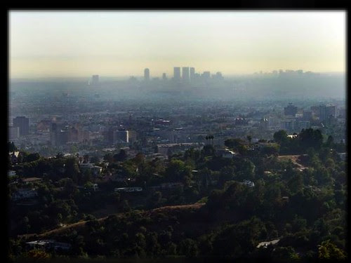 rashbre century city