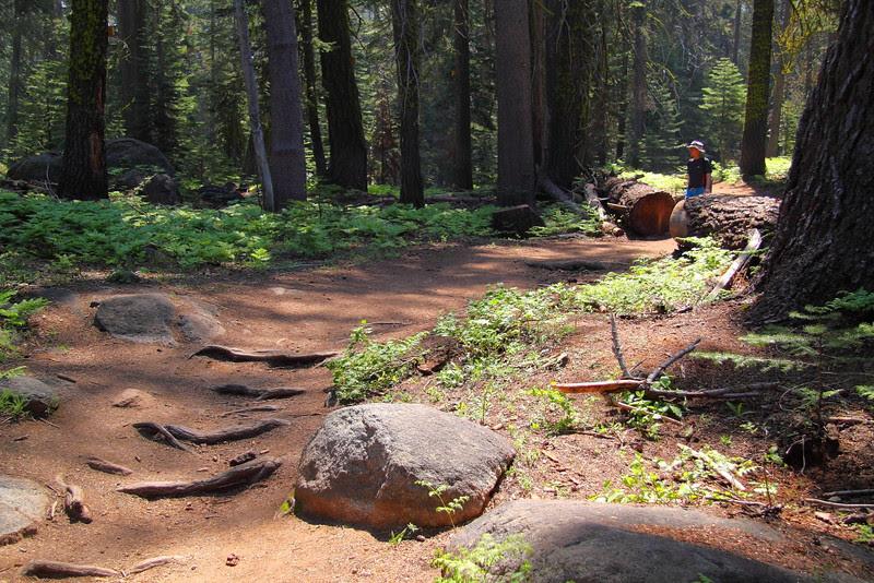 IMG_4407 Taft Point, Yosemite National Park