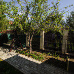 inchiriere-vila-in-pipera-www-olimob-ro28