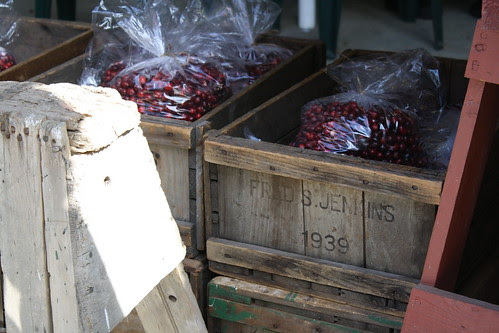 Cranberries for Sale