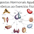 Modificações hormonais do Exercício