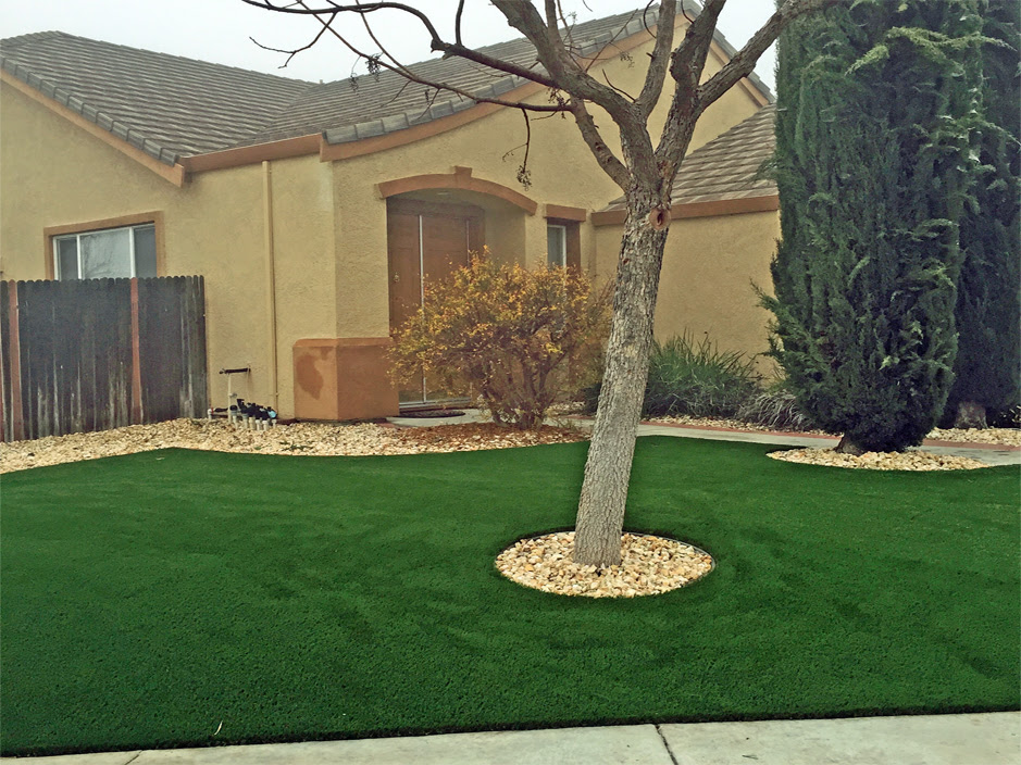 Artificial Grass Carpet Toledo, Oregon Backyard Deck Ideas ...