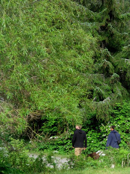 two men, Kasaan, Alaska