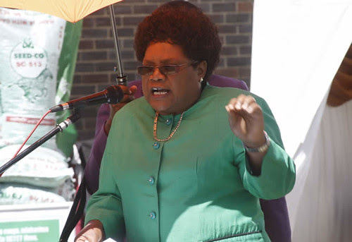 Republic of Zimbabwe Vice-President Joice Mujuru has condemned the re-emergence of Renamo in Mozambique as a rebel organization. by Pan-African News Wire File Photos