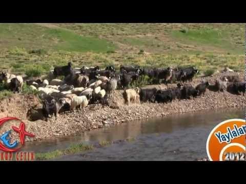Bozkır Yaylalarında Çoban ve Sürüsü - Üçpınar Tufan Deresi Mevkii