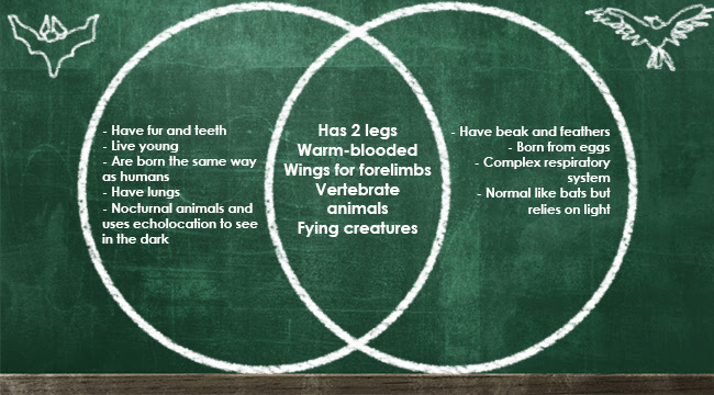 Venn Diagram Definition Uses And Some Examples
