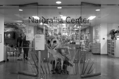 California Academy of Sciences - The Naturalist Center