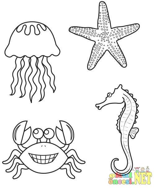 Okul öncesi Deniz Atı Boyama Sayfası Etkinliği Komik Fipixde