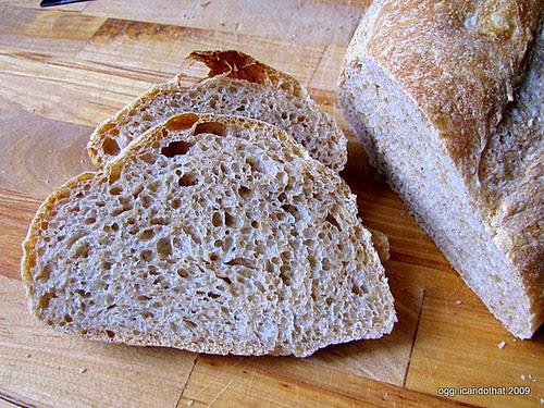 Wild Yeast (Sourdough) Bread