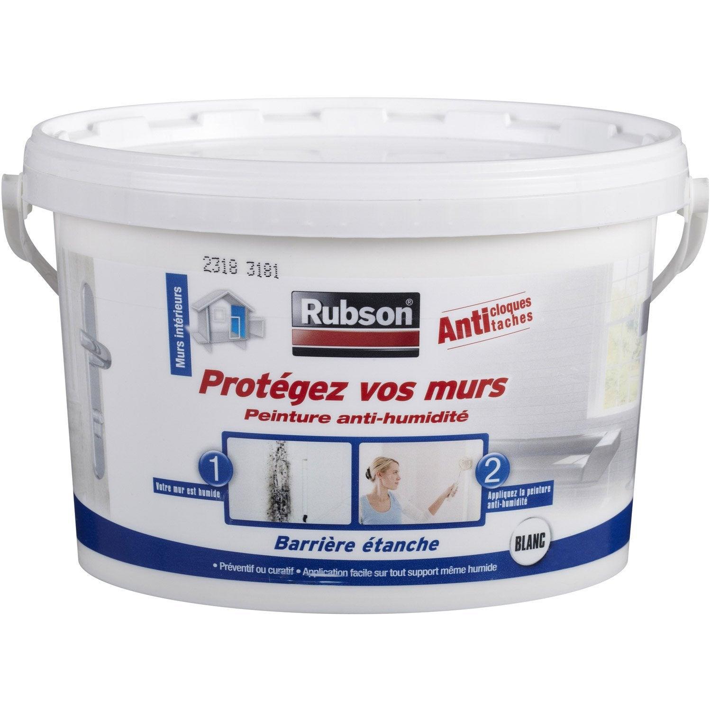 Peinture Antihumidité Protégez Vos Murs Rubson Blanc 25 L Leroy