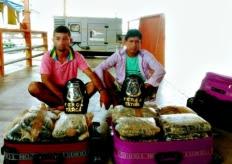 Dupla é detida com 20 kg de drogas em barco no Amazonas