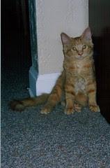 Jasper's first portrait
