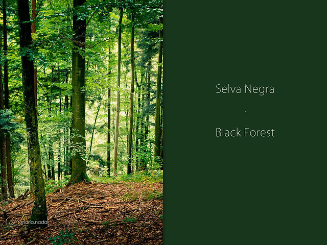 Collage Selva Negra