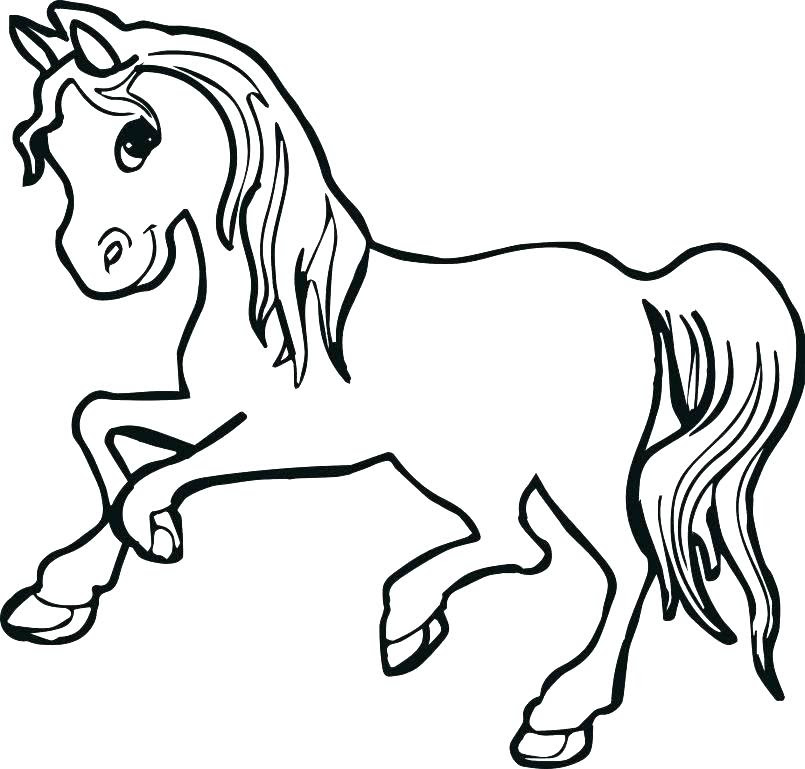 Baby Horse Coloring Pages - Coloringnori - Coloring Pages For Kids
