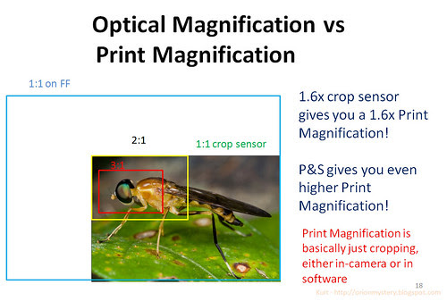 print magnification vs optical magnification soldier fly