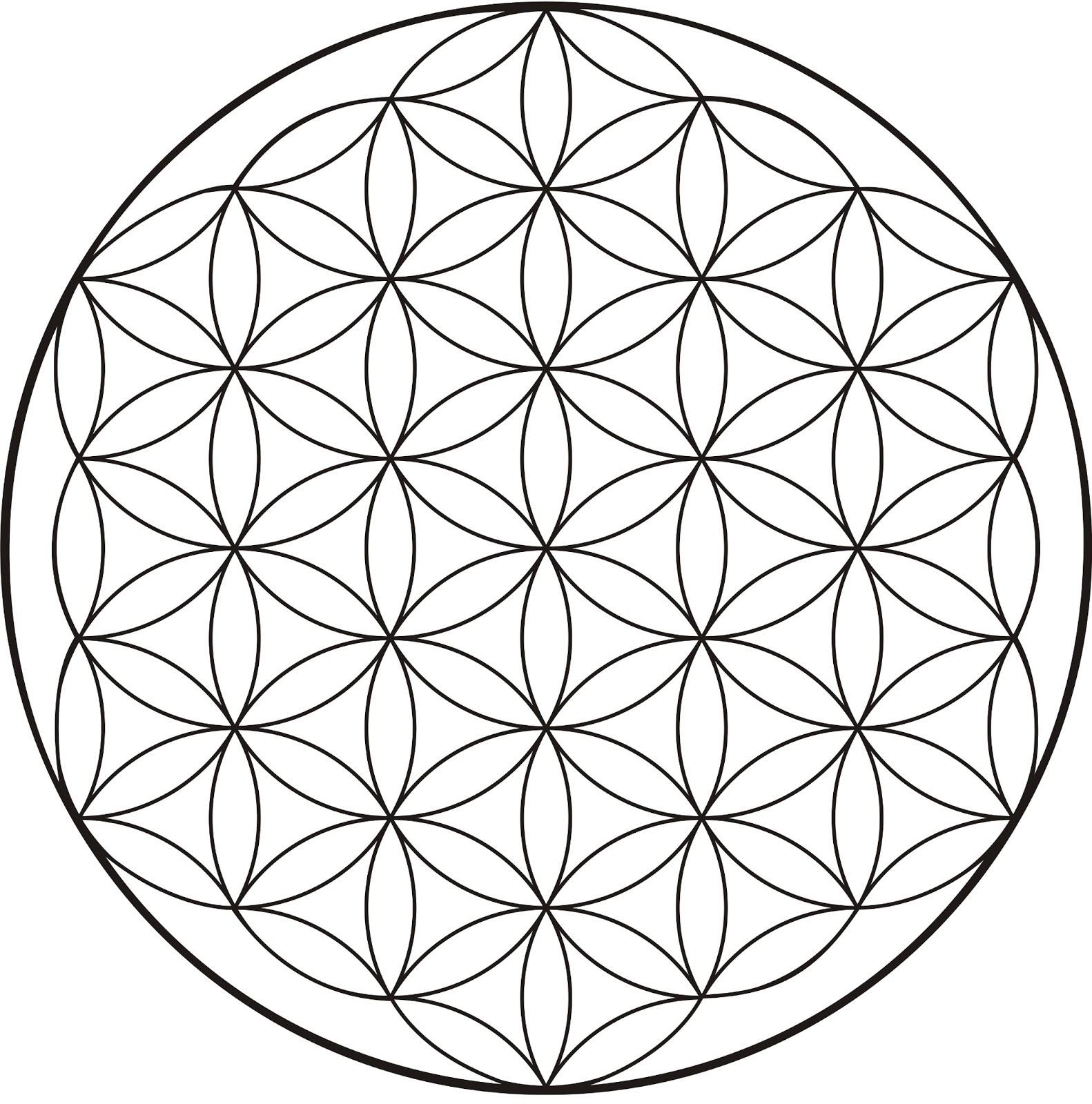 Resultado de imagen de flor de la vida geometria