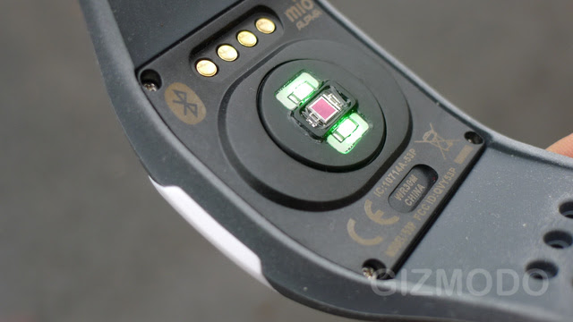 Mio Alpha Review: One Giant Leap For Heart Rate Monitors