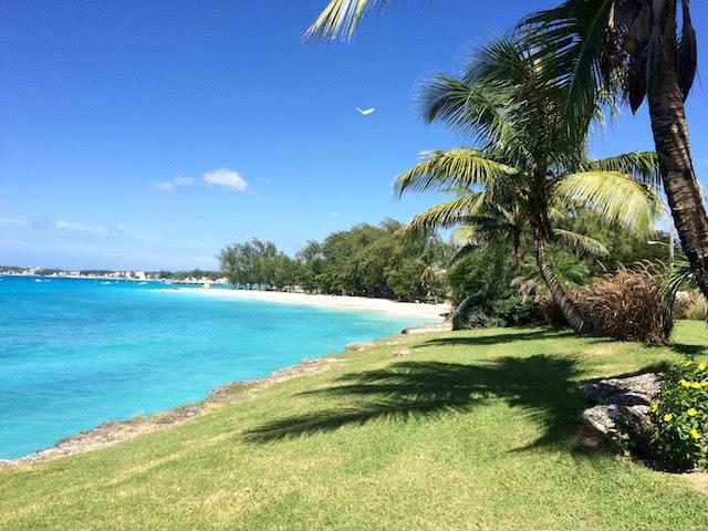 Three Weeks In Barbados A Wandering Reader