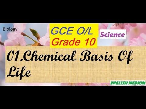 Chemical Basis Of Life - Grade 10 English medium Science