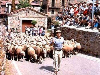 Estas fotos corresponden a la fiesta de la trashumancia de Brieva de Cameros. Consentida su publicación por su autor: Pablo Fontecha Olave, Asociación Cultural Brita, Brieva de Cameros, La Rioja.