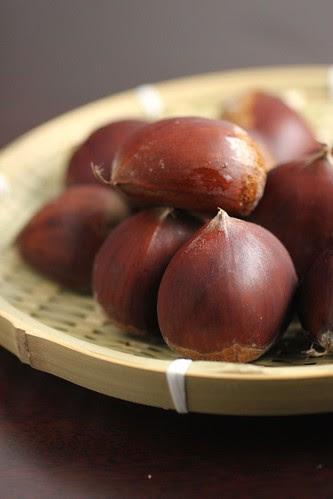 Chestnut 2