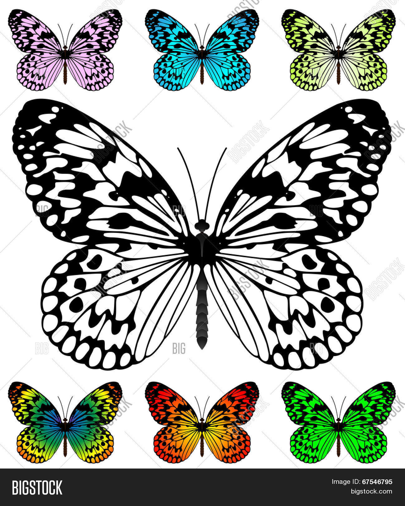 Butterfly template with samples. Easy editable wings color. Paper ...