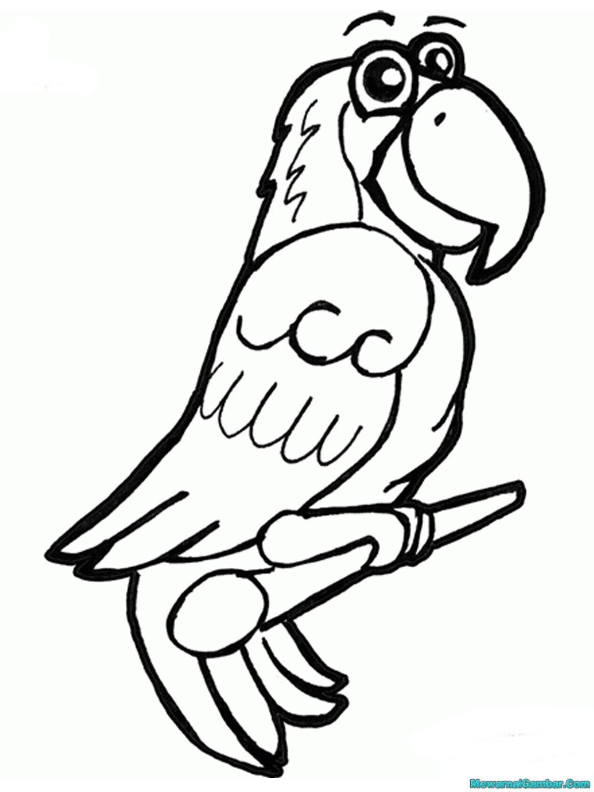 Mewarnai Gambar Burung Merpati Auto Electrical Wiring Diagram