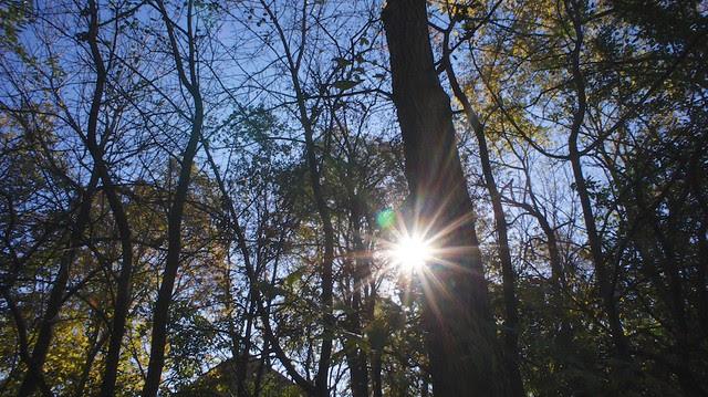 anteketborka.blogspot.com, étoile333