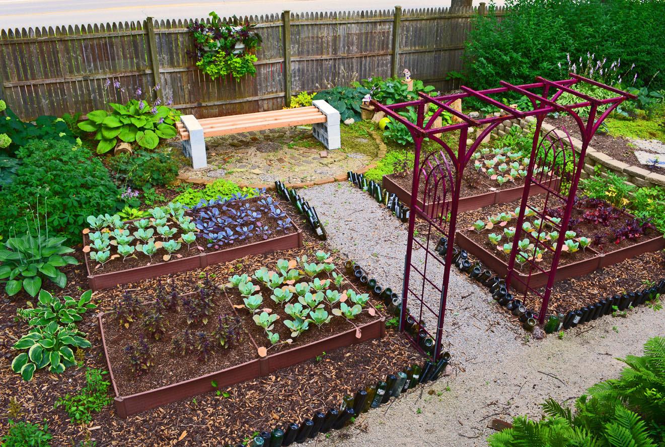 Shade Garden Design Vegetable Colorblocking