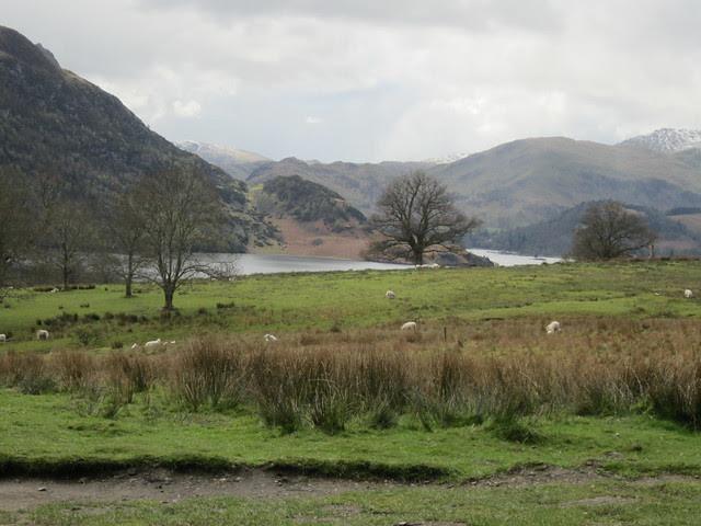 Lake District April 2012 (88)