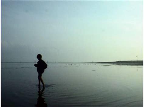 feriendomizil bensersiel ihr nordseeurlaub im wiesenweg