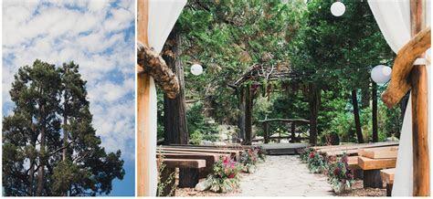 Lake Arrowhead Pine Rose Cabins Wedding   Zoom Theory
