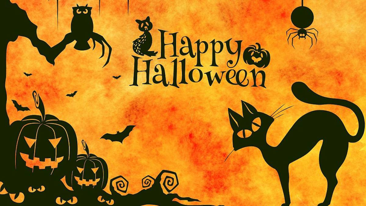 Resultado de imagen para hallowen
