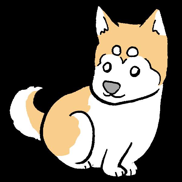 柴犬1のイラスト かわいいフリー素材が無料のイラストレイン