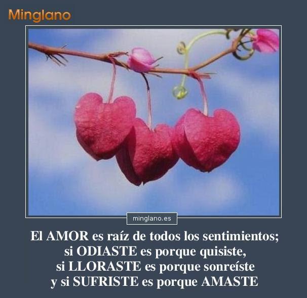 Frases Hermosas Sobre El Amor