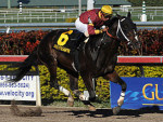 Big Drama Wins the 2011 Mr. Prospector