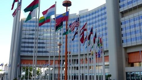 Free [Careers in International Organisations]