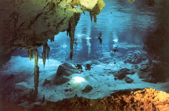 http://www.cenotedosojos.com/images/cenote_dos_ojos.jpg