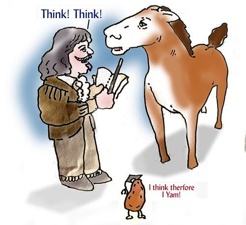 Putting Descartes before de horse