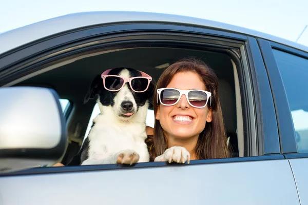 Mulher engraçada com o cão no carro — Fotografia de Stock #26993295