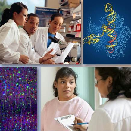 Collage of scientists, clinical research, and science images