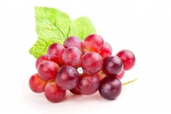 230-plantas-medicinales-mas-efectivas-y-sus-usos-vid-roja