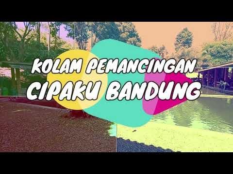 Kolam Pemancingan Cipaku, Wisata Keluarga dengan Kesejukan Alam Bandung Utara