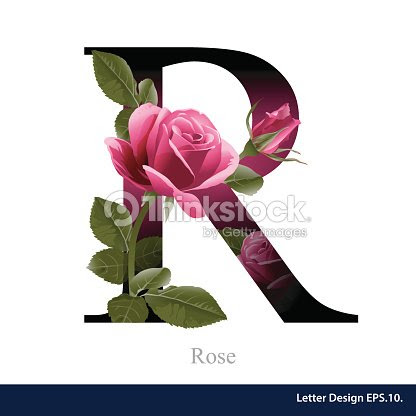 Letter R Vector Alphabet With Rose Flower Abc Concept Stock Vector